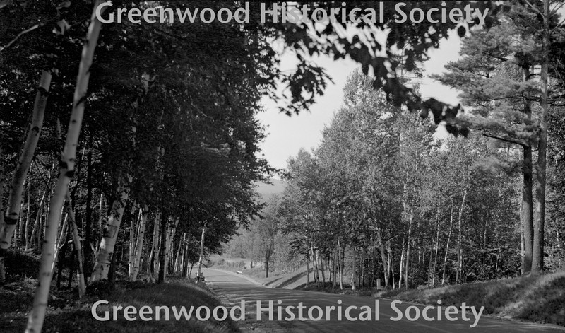 http://greenwoodhistorical.org/images/#BE106.jpg