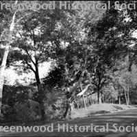 http://greenwoodhistorical.org/images/#BE107.jpg